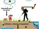 Dissemination_pesticides[1]