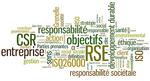 Energie+et+développement+-+définition+de+la+RSE[1]