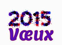 Voeux-2015[1]