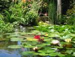 Jardins_fleuris