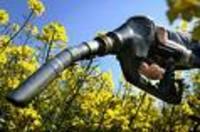 Agrocarburant_1