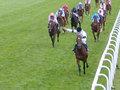Course_de_chevaux